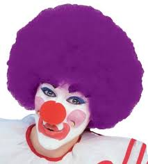 Clown Afro Wig Purple